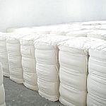16X12涤棉坯布