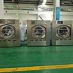 全自动洗脱机什么价格