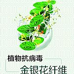 金银花植物抗病毒纤维