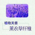 薰衣草植物天香纤维