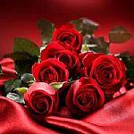 玫瑰香味�{米�z囊��
